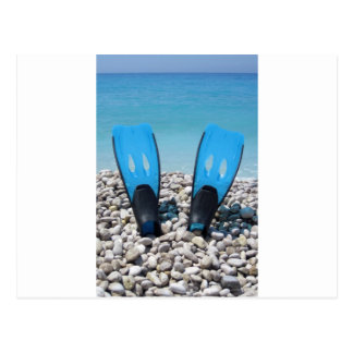 Flippers, Pebbles, and Ocean Post Cards