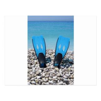 Flippers, Pebbles, and Ocean Postcard