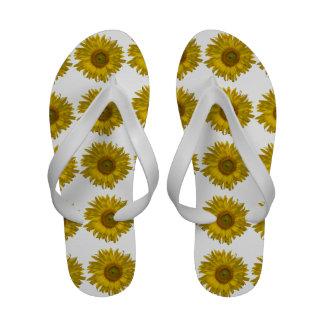 Flips-flopes amarillos del girasol