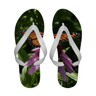 Flips-flopes de la mariposa de las mujeres