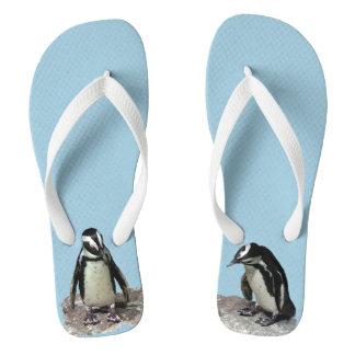 Flips-flopes de los pájaros del pingüino