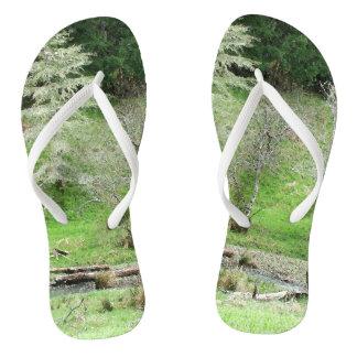 Flips-flopes del bosque de los árboles de la cala