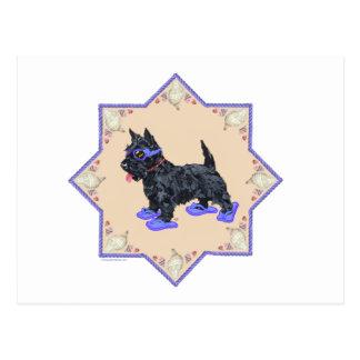 Flips-flopes púrpuras tarjeta postal