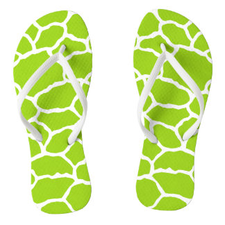 Flips-flopes verdes y blancos del modelo de la chanclas