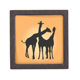 Flirty Giraffe Gift Box
