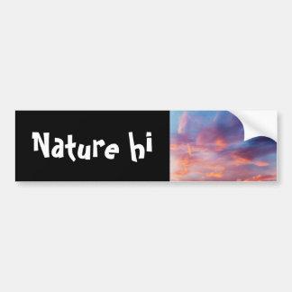 flirty sky bumper sticker