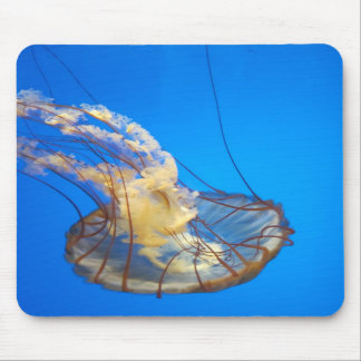 Float away jelly fish mouse pad