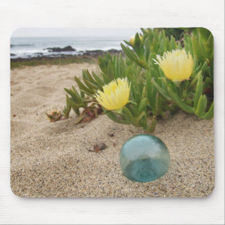 Float with yellow ice plant mouse pad