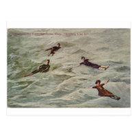 Floaters on Great Salt Lake, Utah Postcard