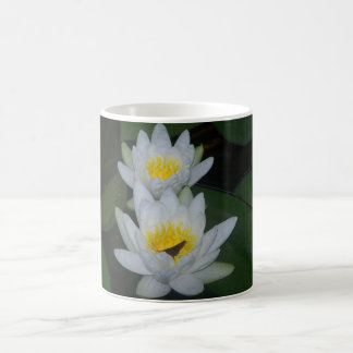 Floating Beauties Lilypad Mugs