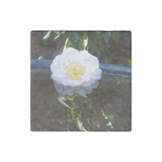Floating Camellia Marble Magnet