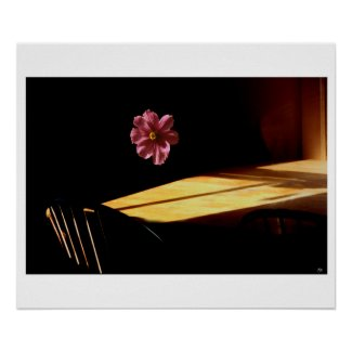 Floating Flower Mindscape Poster
