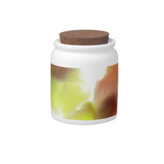 Floating Flowers Design Candy Jars