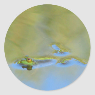 Floating Frog Classic Round Sticker