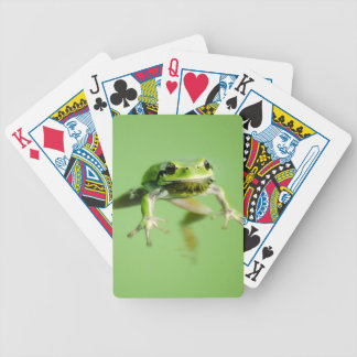 Floating frog in transparent and calm water . bicycle playing cards