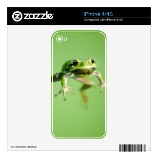 Floating frog in transparent and calm water . skin for the iPhone 4