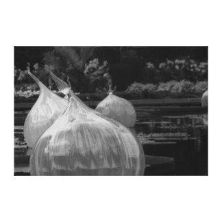 Floating glass bulbs canvas print