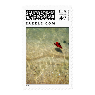 Floating Heart of Love Postage Stamps
