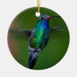 Floating Hummingbird Christmas Tree Ornaments