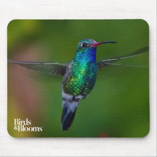 Floating Hummingbird Mouse Pad