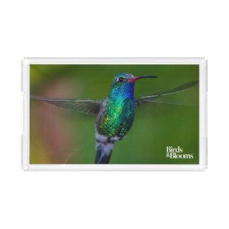 Floating Hummingbird Serving Tray