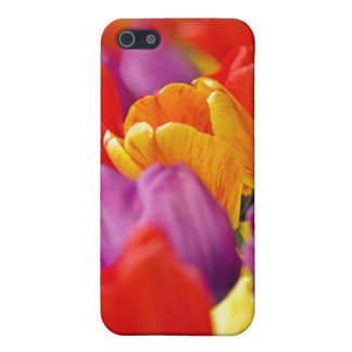 Floating In A Sea Of Color iPhone case. Cover For iPhone SE/5/5s