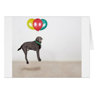 Floating Labrador Greeting Card
