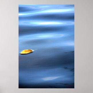 Floating Leaf On Water # 111 Poster