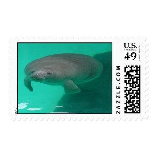 Floating Manatee Postage