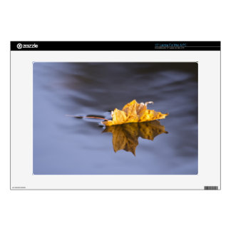 Floating On By Yellow Leaf On Water Laptop Cover Laptop Decal