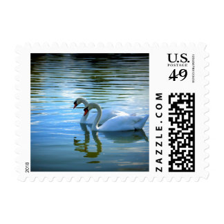 Floating on Glass Postage