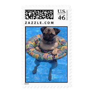 Floating Pug Stamp