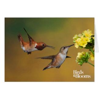Floating Rufous Hummingbird Card