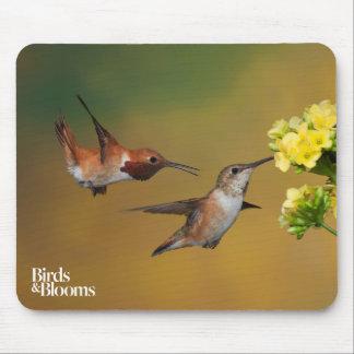 Floating Rufous Hummingbird Mouse Pad