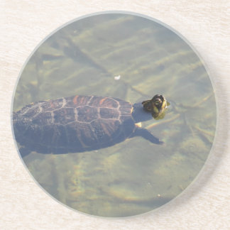 Floating turtle swimming in a pond drink coaster