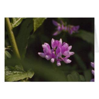 Floating Wildflower Card