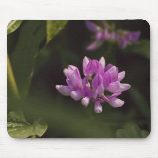 Floating Wildflower Mouse Pad