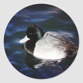 Floating With Sunshine Classic Round Sticker