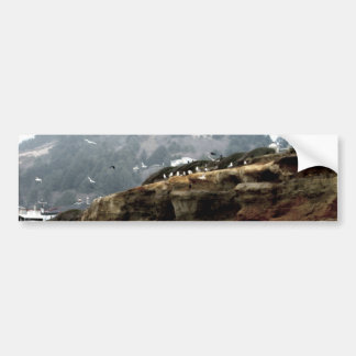 Flock Bumper Sticker
