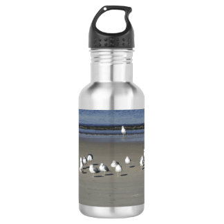 Flock of Chatty Seagulls on the Sand Water Bottle