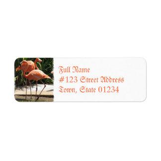 Flock of Flamingos Mailing Label Return Address Label