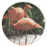 Flock of Flamingos Plate