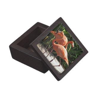 Flock of Flamingos Premium Gift Box