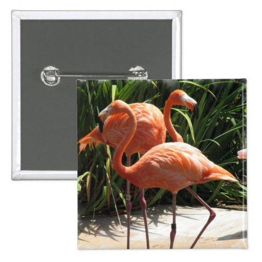 Flock of Flamingos Square Pin