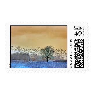 Flock of geese leaving postage stamp