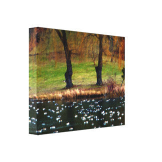 Flock of Geese Weeping Willows Canvas Print