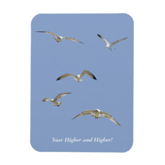 Flock of High-Flying Seagulls Magnet