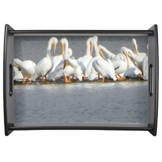 Flock of Pelican Serving Tray