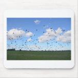 Flock Of Pigeons Mousepads