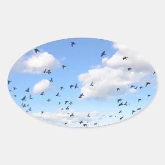 Flock Of Pigeons Oval Sticker